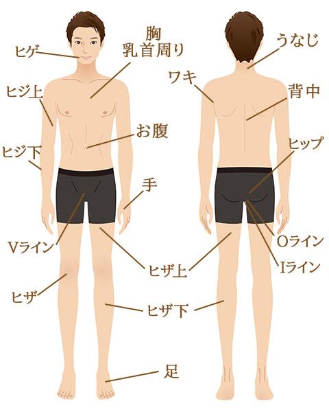 男性脱毛イメージ図